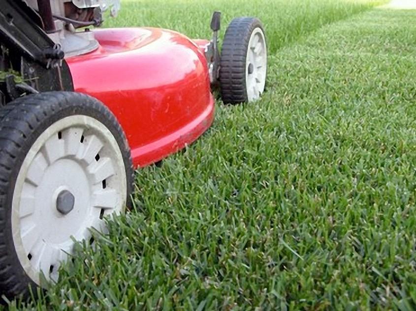 Aussenbereich Rasenpflege